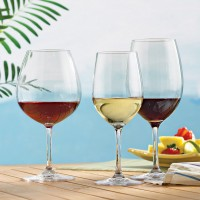 Indoor/Outdoor Wine Glasses Party Set (Set of 12)